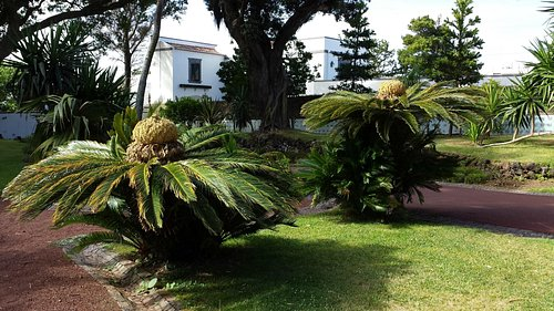 Palácio de Sant'Ana, Ponta Delgada.
