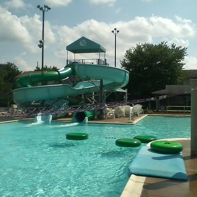 The Activity Pool with Lilly Pad Crossing