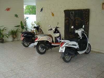 The 3 scooters we hired.