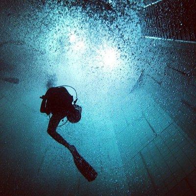 Nemo 33