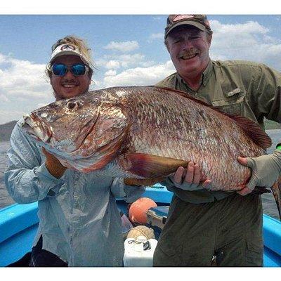 Big cubera 60 pounder