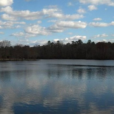 A view of the lake from the Alders Trail