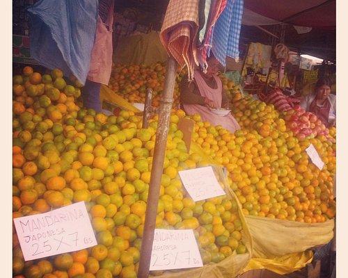an ocean of oranges