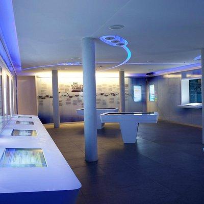 Interactive hall - The Levinson Visitors Center