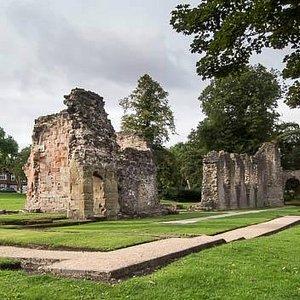 Priory Ruins - Priory Park