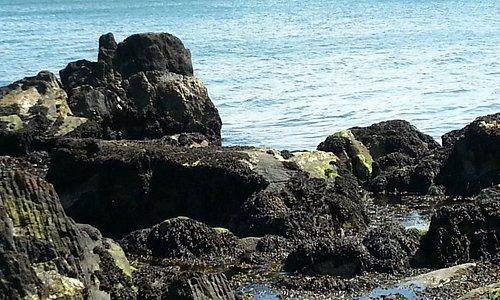 The 'blue' hue of Lough Foyle