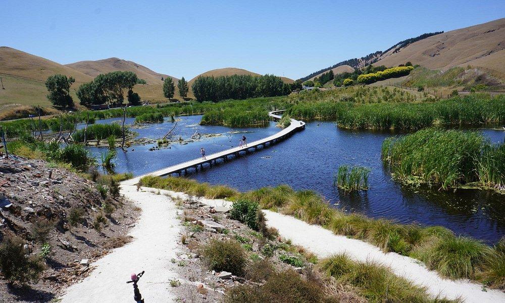 View of the walkway across the wetlands