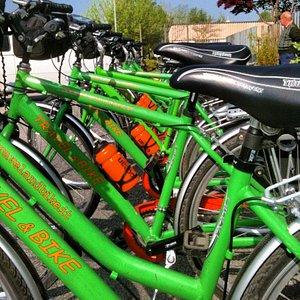 Le nostre bici a noleggio