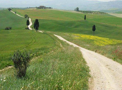 Guided walks in the postcard-like Tuscany!