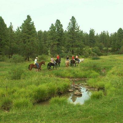 Ride through creeks