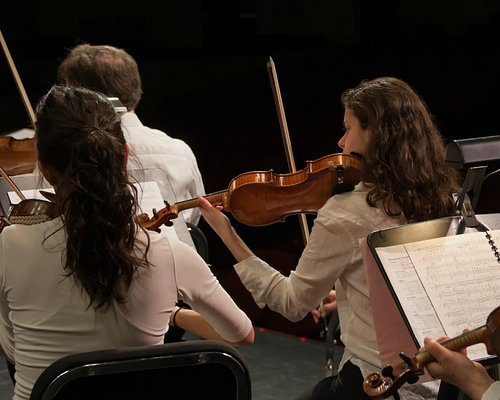 Violinists at the Colors of the Symphony Children's Concert 2014