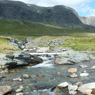 Ovegang elv ved Eitrestølen
