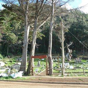 Eingang zu Friedhof von Robinson Crusoe