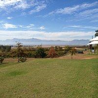 The view across to Wellington