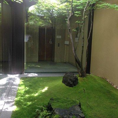 5階のエレベーターを出たら、目に飛び込む、苔むした印象的中庭