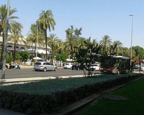 Gardens of alcazaba