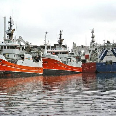 trawlers moored in line