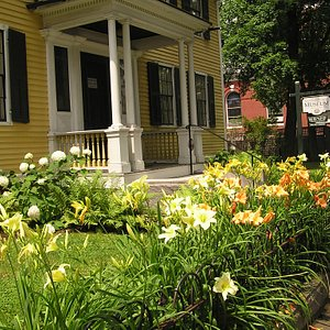 Day lily display in July.