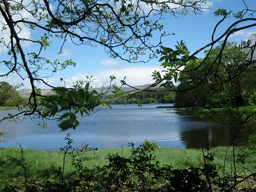 Reenagross Park view across Kenmare Bay