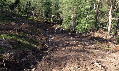 The STEEP climb to start the hike to the crash site. Spent years hiking in the Norwegian mountai
