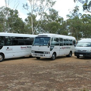 Our range of buses to suit your needs