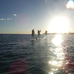 SUP into the Sunset