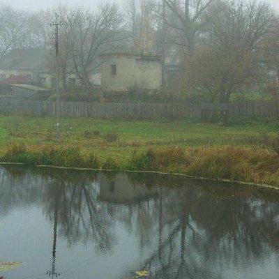 Kozelets: The Oster River in the fog