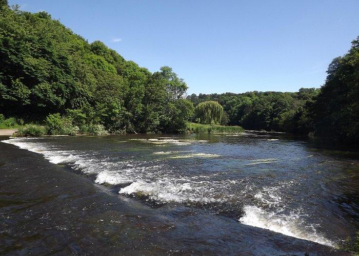 River at Etal