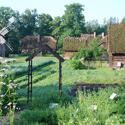 Friluftsmuseet i Ciechanowiec med den botaniske hagen i framgrunnen.
