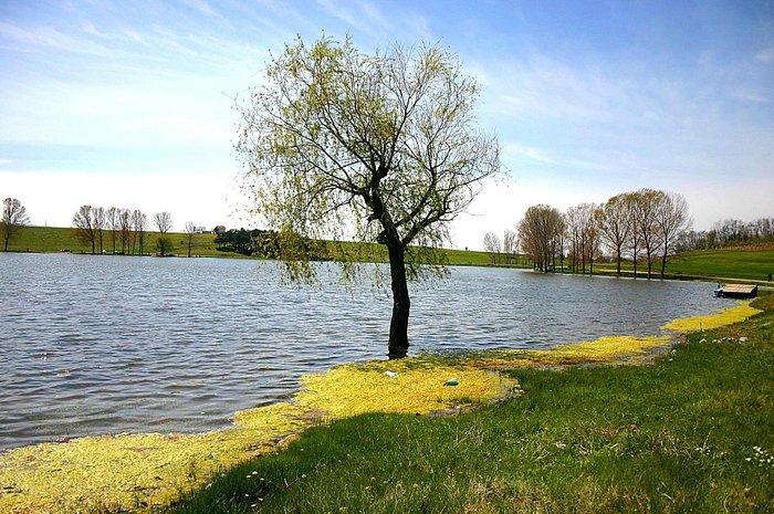 Aleksandrovačko jezero