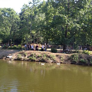 Small waterstream & picnick area