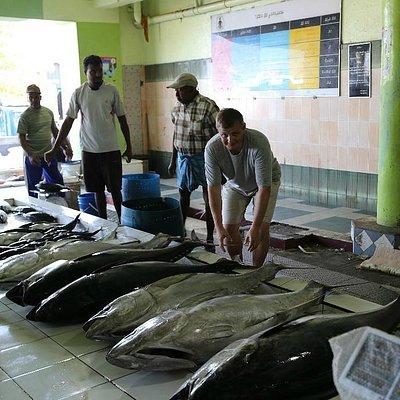 Полный тунец (тунец-молодец)