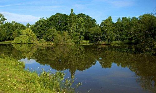 Lake at Accommodation