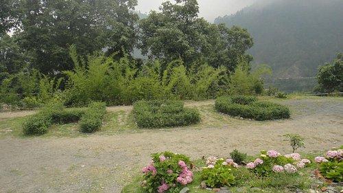'HBG' written with small plants, Himalayan Botanical Garden, Nainital