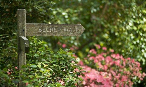 Secret Walk fingerpost sign in Abbotsbury Subtropical Gardens