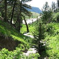 Beaver Ponds Loop Trail- boardwalk side