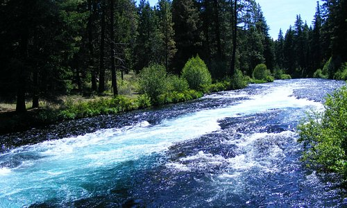 Another section of the Metolius, by the fish hatchery