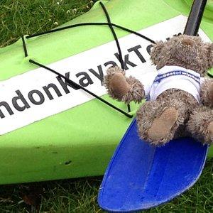 Bertie the bear loved the kayak trip