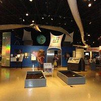 The museum curves around the planetarium in the center.
