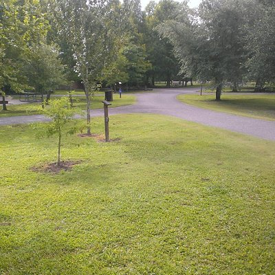 A view of the campground