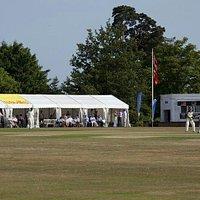 Cricket week on The Vine, always 2nd week of July