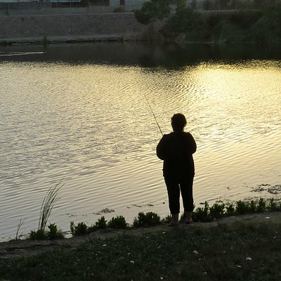 Lakeside fishing