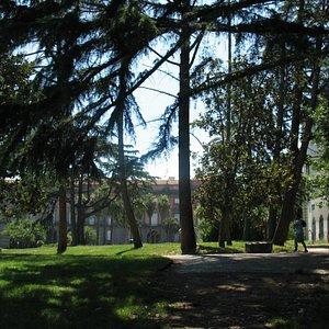Bosco e Palazzo Reale
