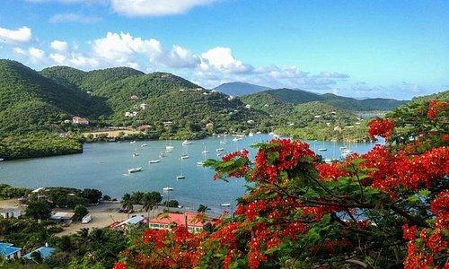 sail pepper  day sails, St. John, Virgin Islands, sailing, snorkeling, Coral Bay, Maho Bay