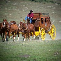 Harris Stage Lines Stagecoach