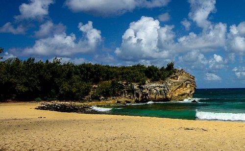Nice beach scene