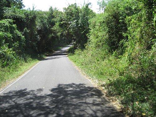 Highway 997