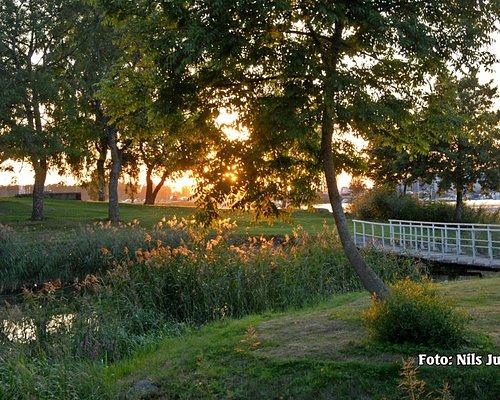 Vackra och romantiska omgivningar i parken längs Vänerns strand.