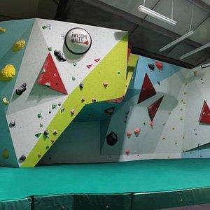 Awesome Walls Cork