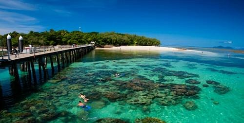 Snorkeling of the jetty on green island
